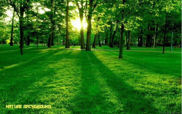 Télécharger photo background nature png