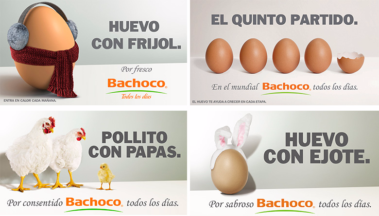 Télécharger photo huevo con frijol bachoco png